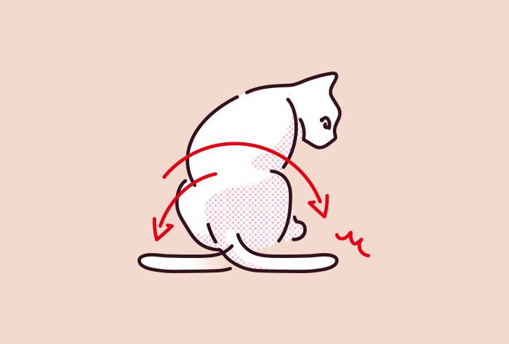 猫がしっぽを大きくバタバタと動かしているイラスト