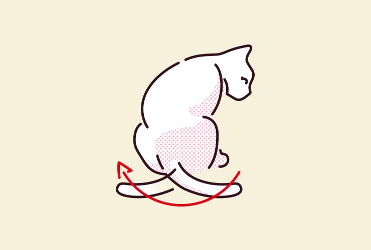 猫がしっぽを大きくゆっくり振っているイラスト