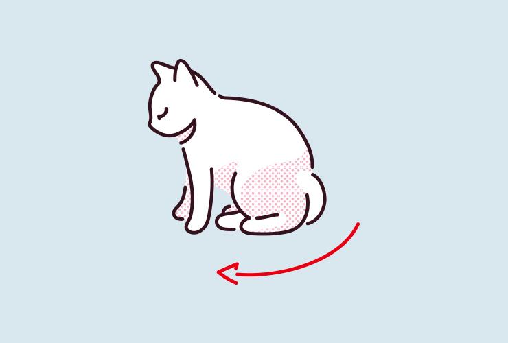 猫がしっぽを後ろ足の間に隠しているイラスト