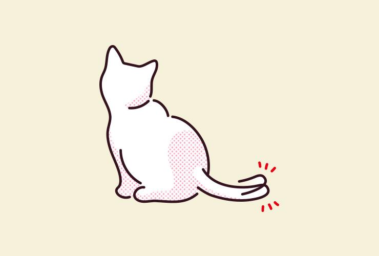 猫がしっぽの先をピクピクさせるイラスト