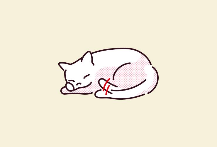 猫が寝ているときにしっぽの先だけ小さく振るイラスト