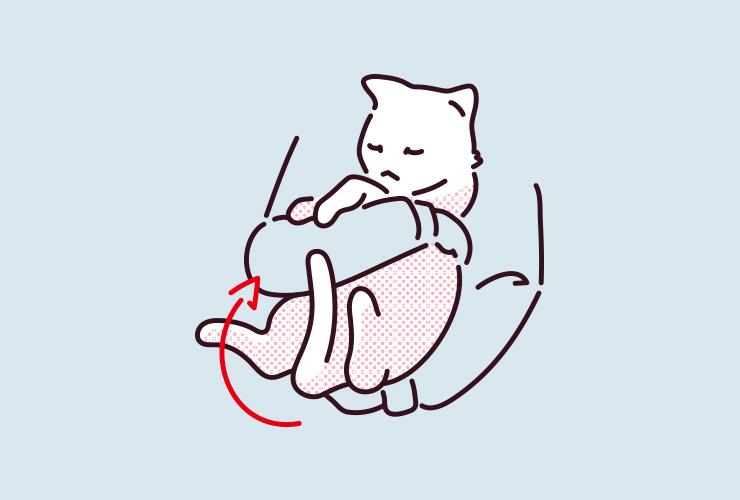 猫が抱っこしたときにバタバタとしっぽを振るイラスト
